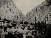 محله شوا