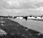 اردوگاه  شرکت نفت انگلیس 1934